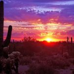 sunset az (1)